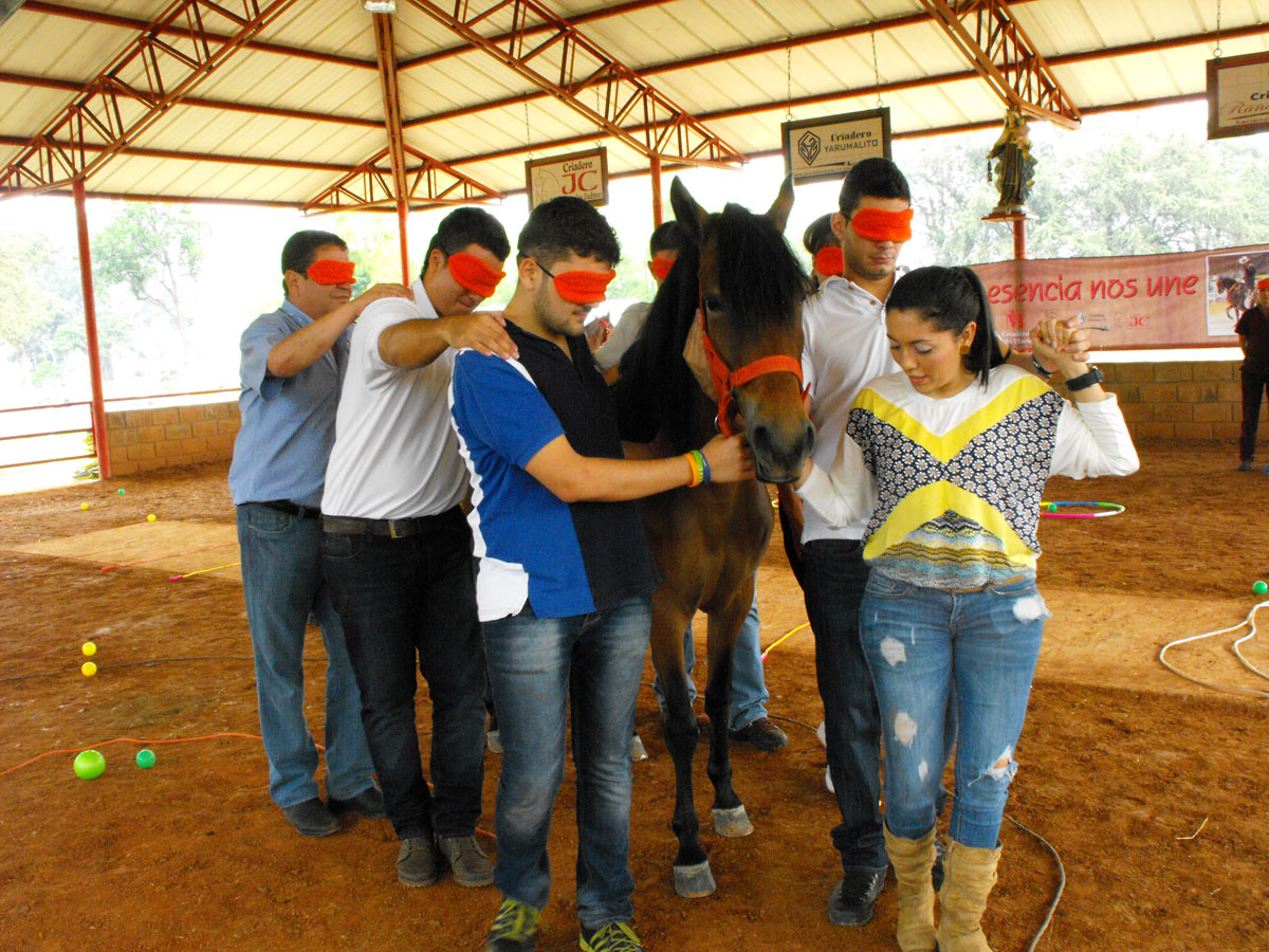 coaching-asistido-con-caballos